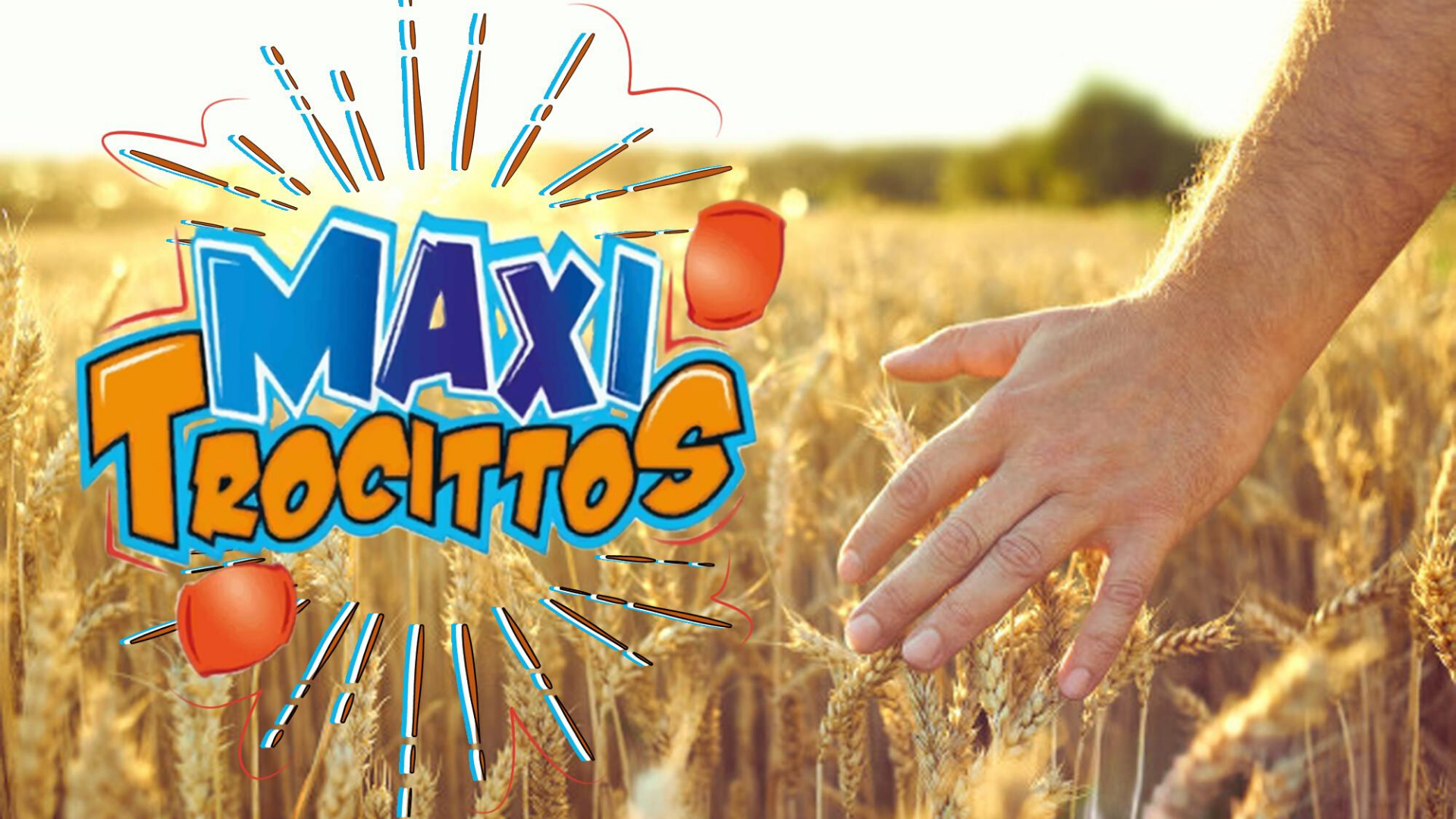 Maxifritos Nuestros productos expandidos de Trigo