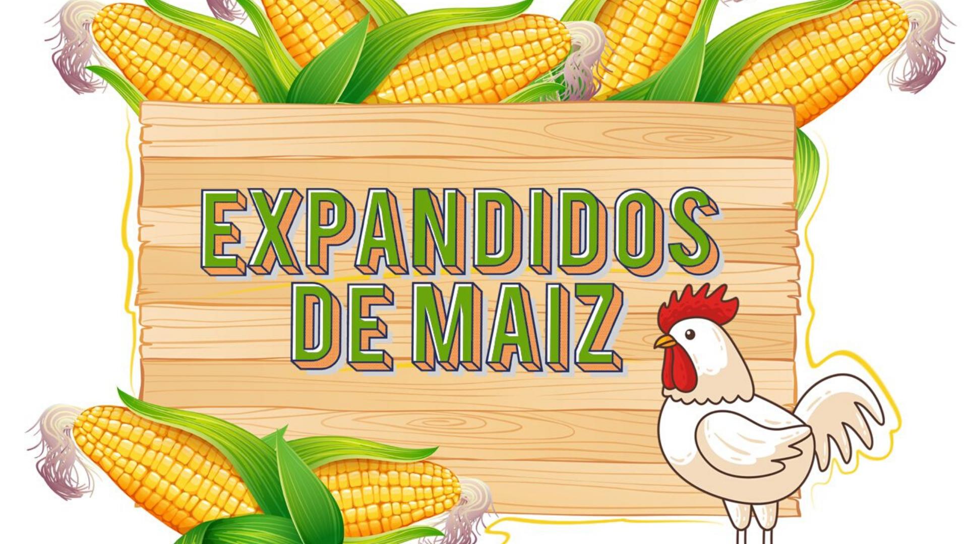Maxifritos Nuestros productos Expandidos de Maíz